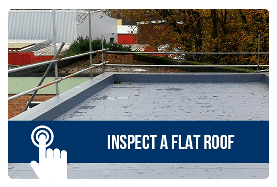 Inspect a Flat Roof
